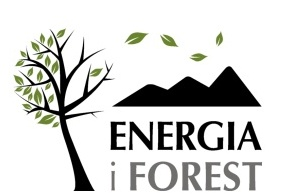 logo_energia_forest